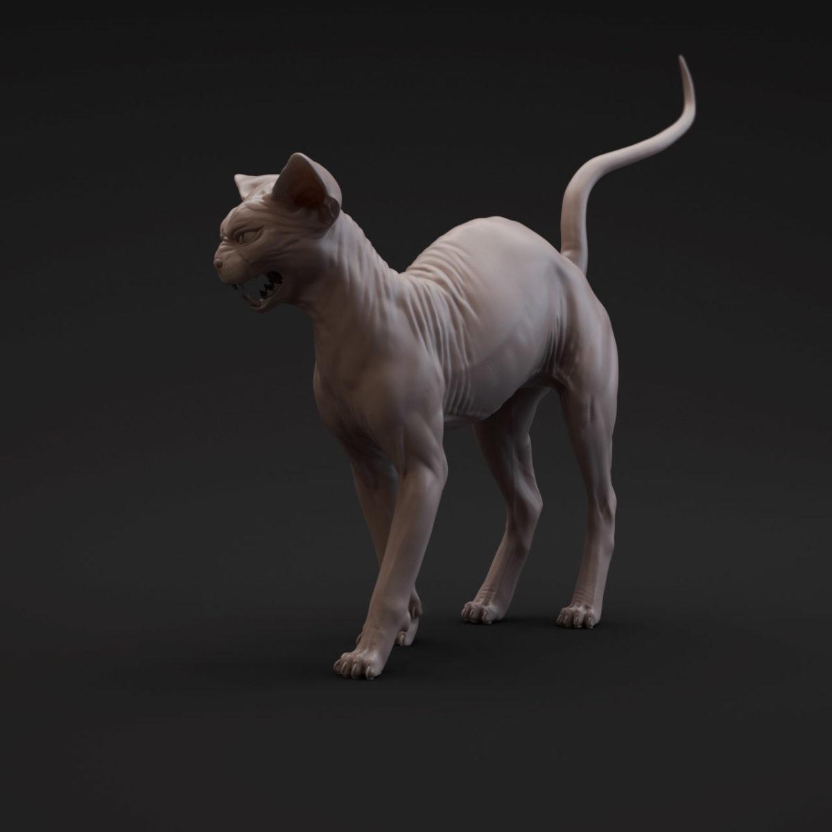 Sphynx Cat ZBrush Model by Digital Artist Anna Schmelzer